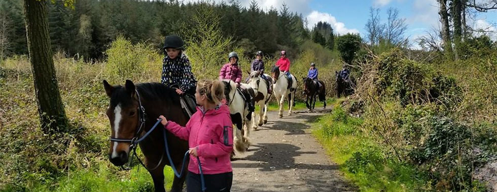 Horse Riding/Trekking Holiday Banbridge County Down - Golfkeel Self Catering